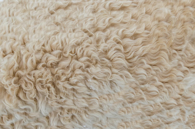 Fur fabric manufacturers India
